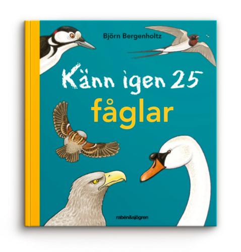 Naturbok för barn: Känn igen 25 fåglar